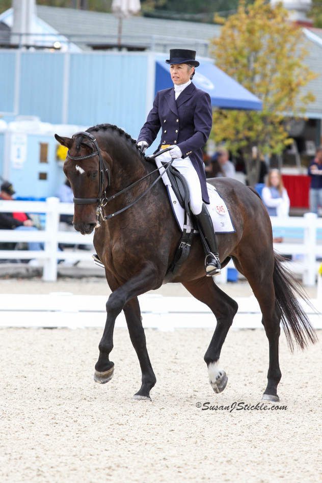 Dressage Training through Trust and Partnership with Professional Mette Larsen